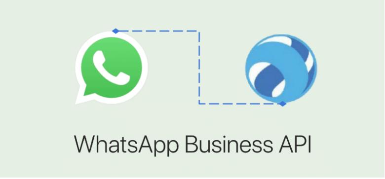 интеграция WhatsApp с платформой LiveTex